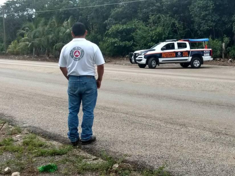 Doblegan esfuerzos y vigilancia en LázaroCárdenas