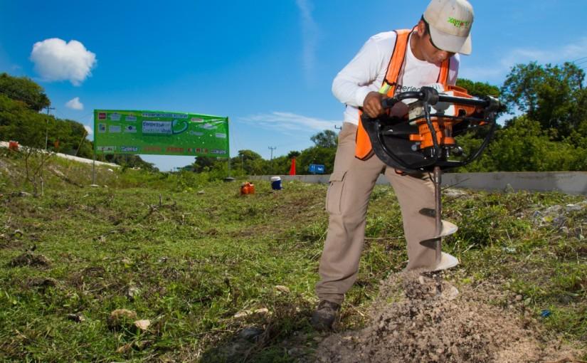 Reconoce CEMEFI a Experiencias Xcaret por Liderazgo enReforestación