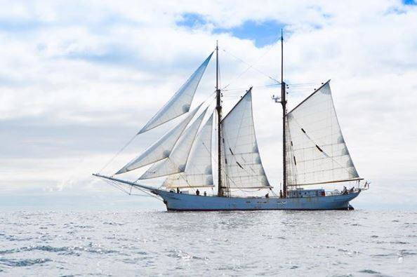 Zarpa 'Aventuur' de Puerto Morelos a Alemania; navegará sin contaminar elmar