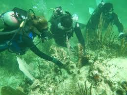 INAPESCA Puerto Morelos en Congreso Nacional de ArrecifesCoralinos